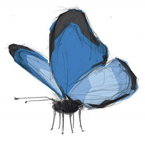 illustration_schmetterling_01