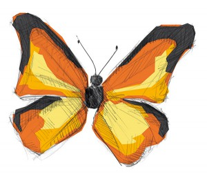 illustration_schmetterling_02