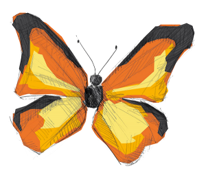 illustration_schmetterling_02_transparent